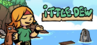 Ittle Dew achievements