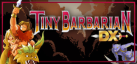 Tiny Barbarian DX achievements