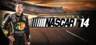 NASCAR 2014 achievements