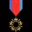 Enlistment Medal in Gratuitous Tank Battles