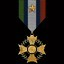 Infantry Deployment Medal in Gratuitous Tank Battles