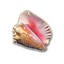 Conch Shell Expert in Gotham City Impostors