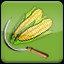 Harvest Corn (2) in Agricultural Simulator 2013 Steam Edition