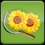 Harvest Sunflower (2) in Agricultural Simulator 2013 Steam Edition