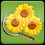 Harvest Sunflower (3) in Agricultural Simulator 2013 Steam Edition