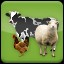 Animal Husbandry (2) in Agricultural Simulator 2013 Steam Edition