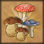 Mushroom-picker in Hero of the Kingdom