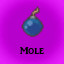 Mole in Last Dream