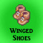 Winged Shoes in Last Dream