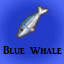 Blue Whale in Last Dream