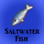 Saltwater Fish in Last Dream