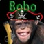 Bobo The Pirate