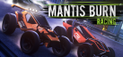 Mantis Burn Racing achievements
