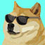 Doge with it in Montaro