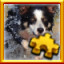 Border Collie Complete! in Pixel Puzzles Ultimate