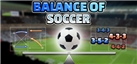 Balance of Soccer achievements