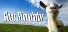 Completed Game: Goat Simulator for 2,935 TrueSteamAchievement points (inc DLC)