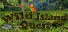 Completed Game: Wild Island Quest for 105 TrueSteamAchievement points