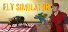 Fly Simulator