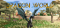 Dragon World Achievements